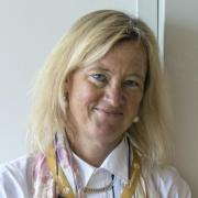Ingrid Bonde is a member of the Global Commission on the Economy and Climate